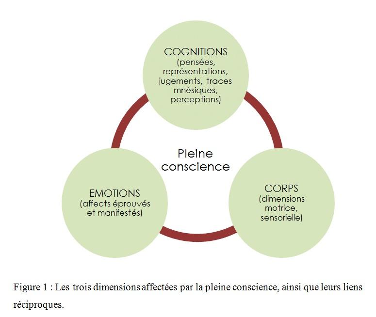 Les-trois-dimensions-affectees-par-la-pleine-conscience2